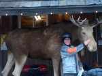 Moose in front of general store in Wawa Ontario